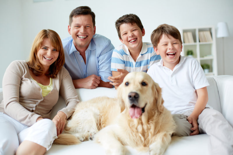 IMG_9164-1032-e1501168976432 How Your Family Can Create an Emergency Plan for Your Pets